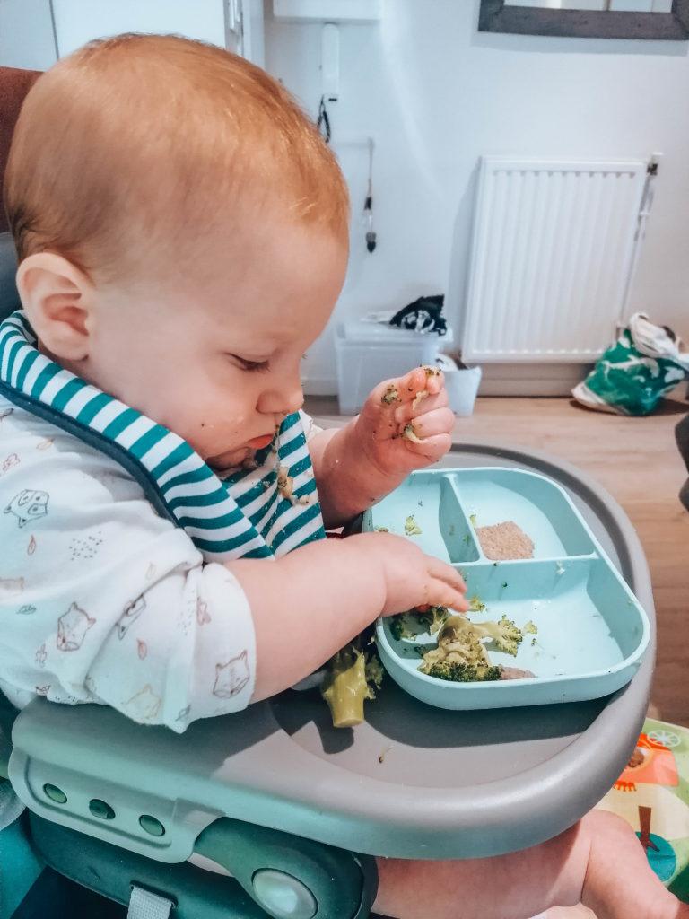 Bébé en DME végane - premiers repas