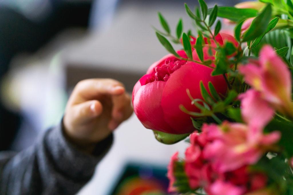 Monsieur Marguerite avis fleurs de saison bouquet bébé